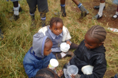 Baby class children eating lunch